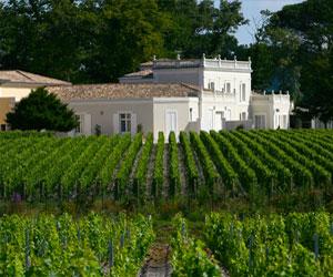 Château Gazin-rocquencourt